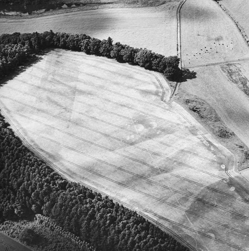 Oblique aerial view centred on the cropmarks of the palisaded enclosure, ring-ditch, Roman road, round house, souterrain, pits, linear cropmark and possible pit-alignment, taken from the ESE.