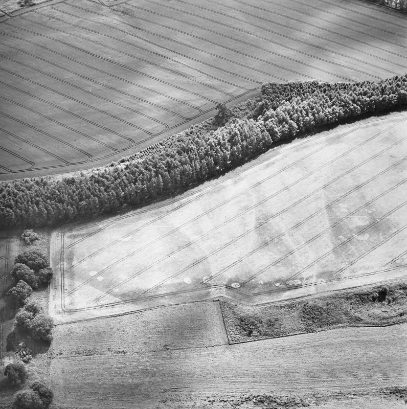 Oblique aerial view centred on the cropmarks of the palisaded enclosure, ring-ditch, Roman road, round house, souterrain, pits, linear cropmark and possible pit-alignment, taken from the N.