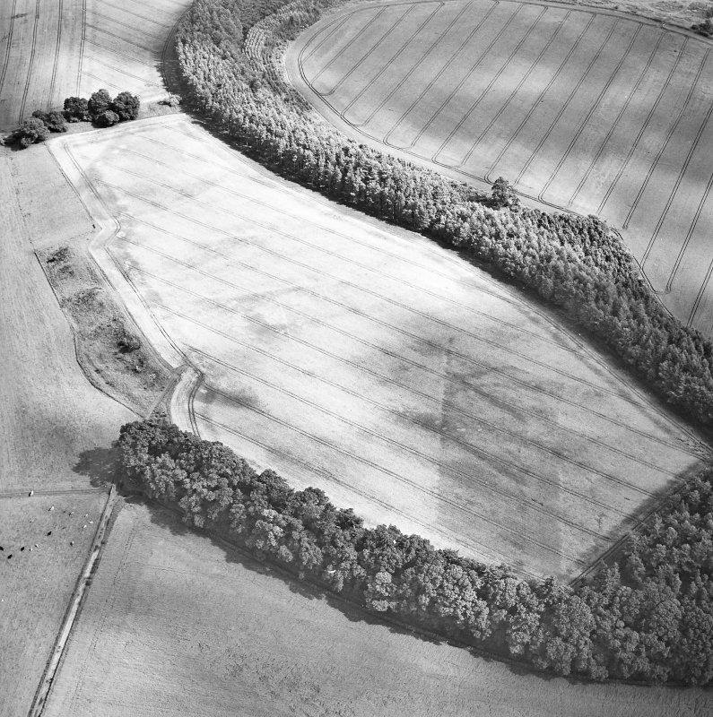 Oblique aerial view centred on the cropmarks of the palisaded enclosure, ring-ditch, Roman road, round house, souterrain, pits, linear cropmark and possible pit-alignment, taken from the WNW.