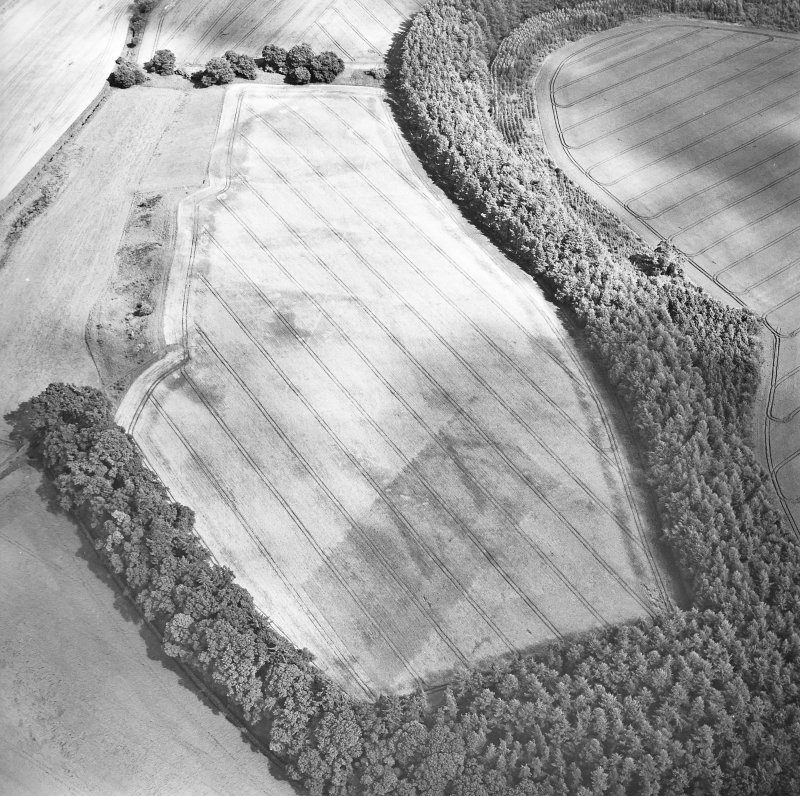 Oblique aerial view centred on the cropmarks of the palisaded enclosure, ring-ditch, Roman road, round house, souterrain, pits, linear cropmark and possible pit-alignment, taken from the W.