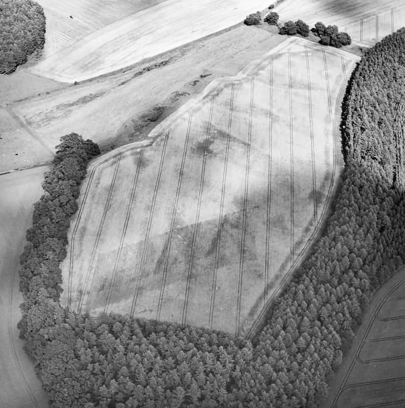 Oblique aerial view centred on the cropmarks of the palisaded enclosure, ring-ditch, Roman road, round house, souterrain, pits, linear cropmark and possible pit-alignment, taken from the WSW.