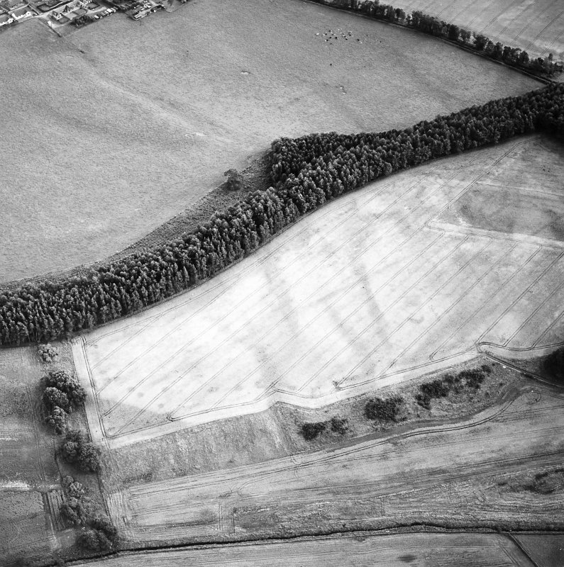 Oblique aerial view of Spittalfield centred on the cropmarks of a round house and souterrain with Roman road adjacent, taken from the N.