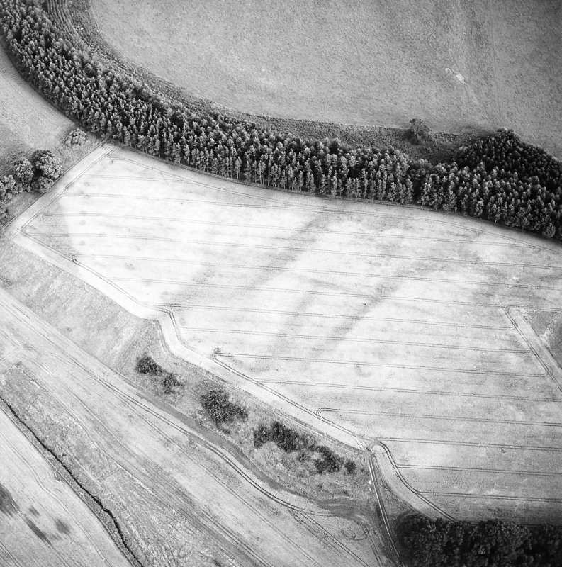 Oblique aerial view of Spittalfield centred on the cropmarks of a round house and souterrain with Roman road adjacent, taken from the NW.
