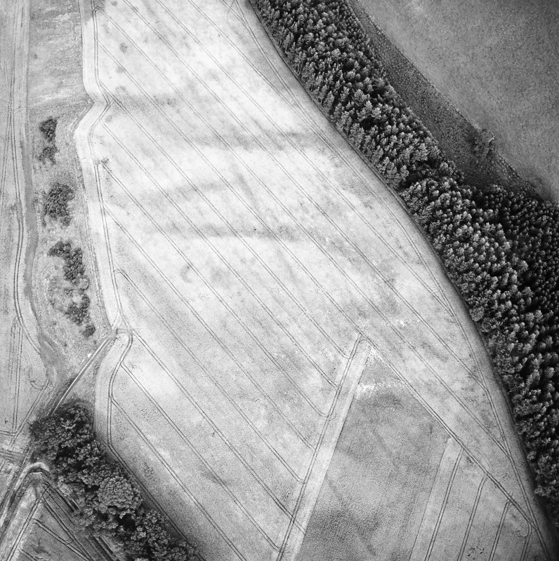 Oblique aerial view of Spittalfield centred on the cropmarks of a round house and souterrain with Roman road adjacent, taken from the W.