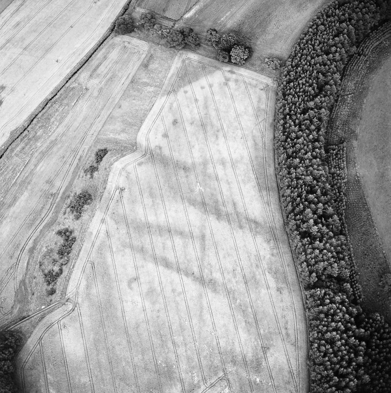 Oblique aerial view of Spittalfield centred on the cropmarks of a round house and souterrain with Roman road adjacent, taken from the WSW.