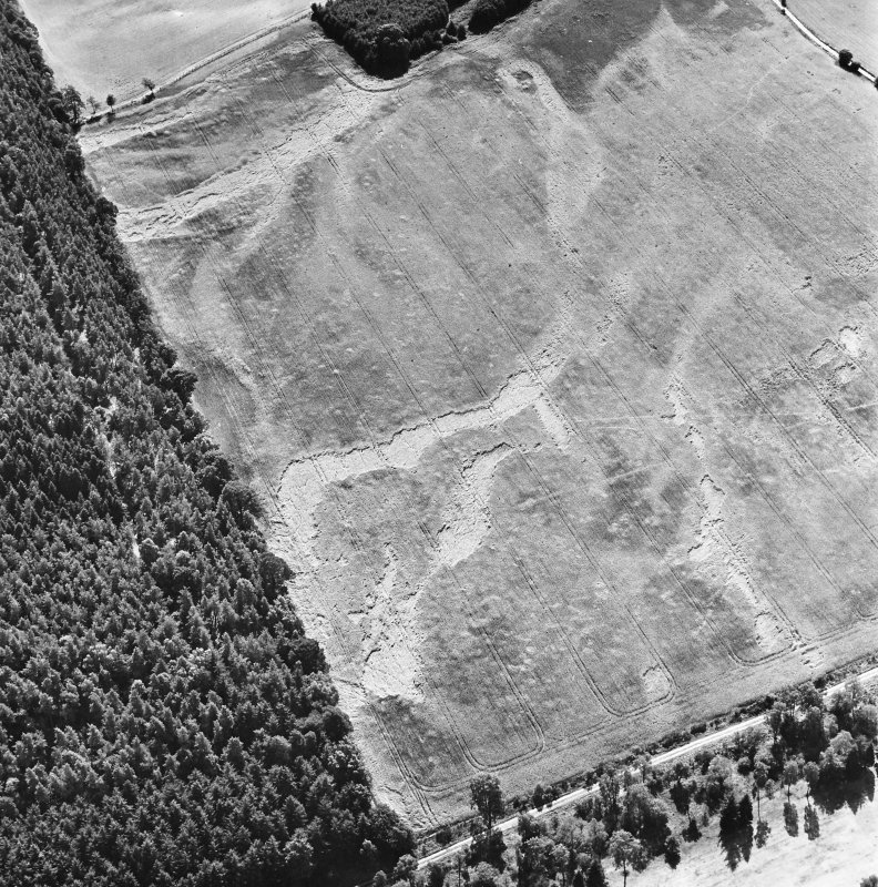 Carsie Mains, oblique aerial view, taken from the N, showing the cropmarks of a series of pit features including a pit-circle, mortuary enclosure and pit-alignment.