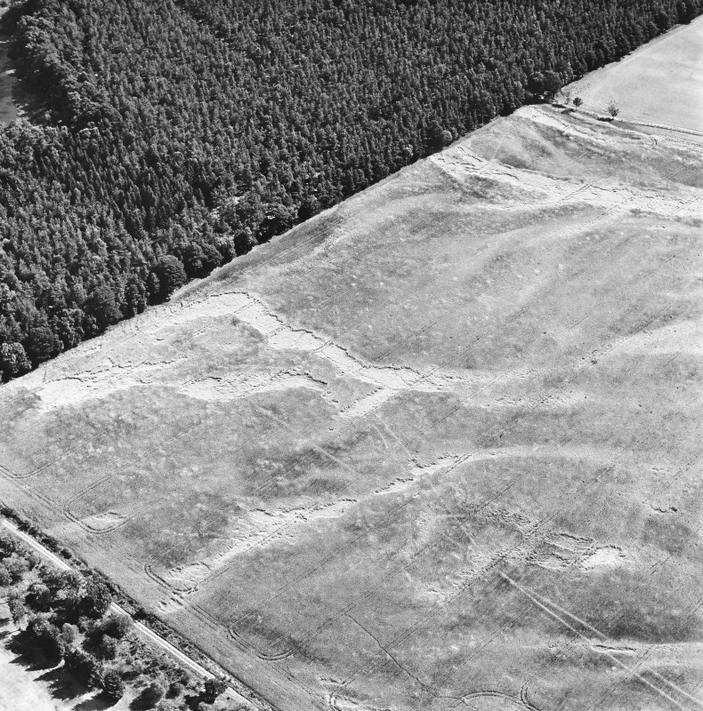 Carsie Mains, oblique aerial view, taken from the WNW, showing the cropmarks of a series of pit features including a pit-circle, mortuary enclosure and pit-alignment.