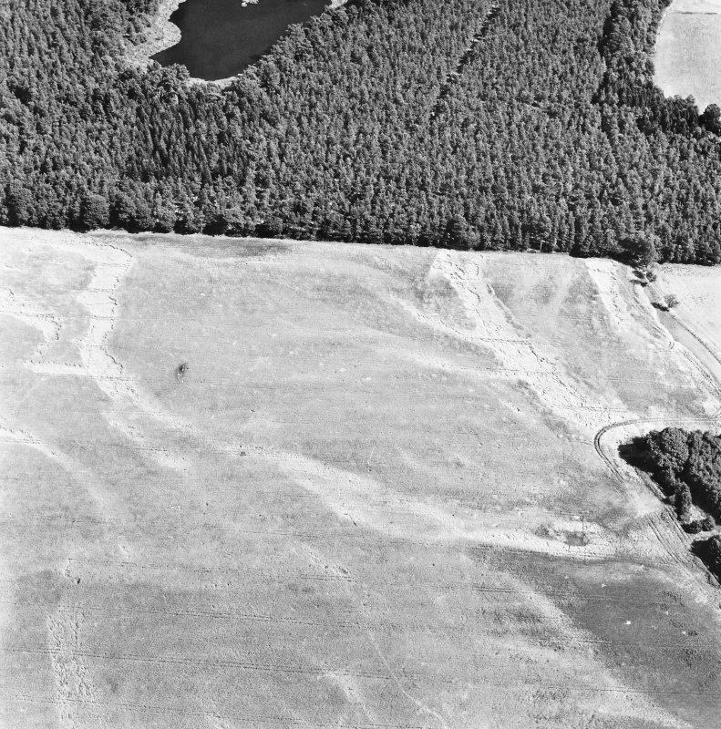 Carsie Mains, oblique aerial view, taken from the WSW, showing the cropmarks of a series of pit features including a pit-circle, mortuary enclosure and pit-alignment.