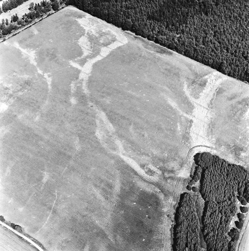 Carsie Mains, oblique aerial view, taken from the SW, showing the cropmarks of a series of pit features including a pit-circle, mortuary enclosure and pit-alignment.