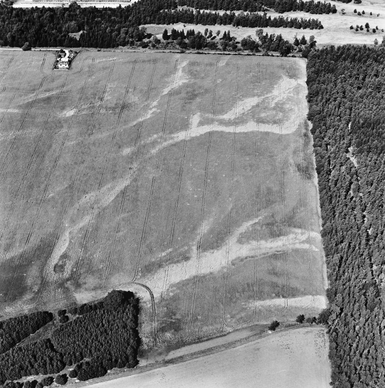 Carsie Mains, oblique aerial view, taken from the SSE, showing the cropmarks of a series of pit features including a pit-circle, mortuary enclosure and pit-alignment.
