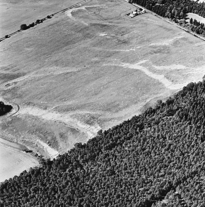 Carsie Mains, oblique aerial view, taken from the E, showing the cropmarks of a series of pit features including a pit-circle, mortuary enclosure and pit-alignment.