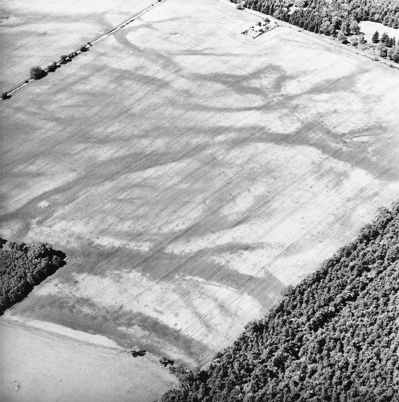 Carsie Mains, oblique aerial view, taken from the SE, centred on a complex of cropmarks including pit features, ring-ditches and linear cropmarks.
