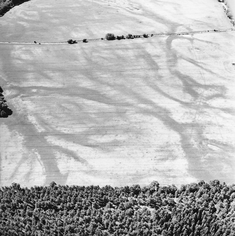 Carsie Mains, oblique aerial view, taken from the ENE, centred on a complex of cropmarks including pit features, ring-ditches and linear cropmarks.