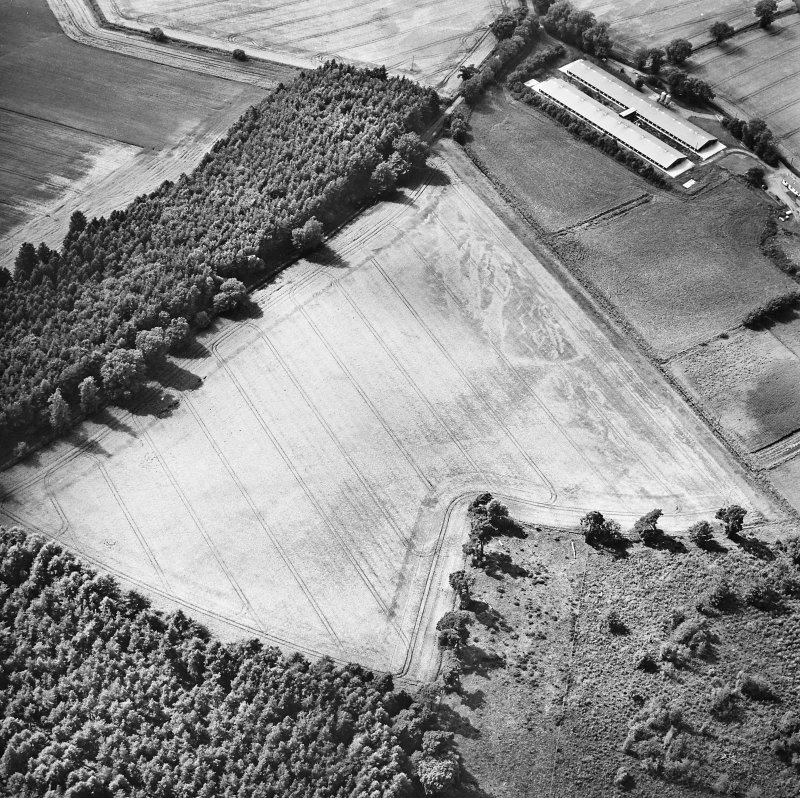 Oblique aerial view centred on the cropmarks of the NW section of the cursus, taken from the ESE.