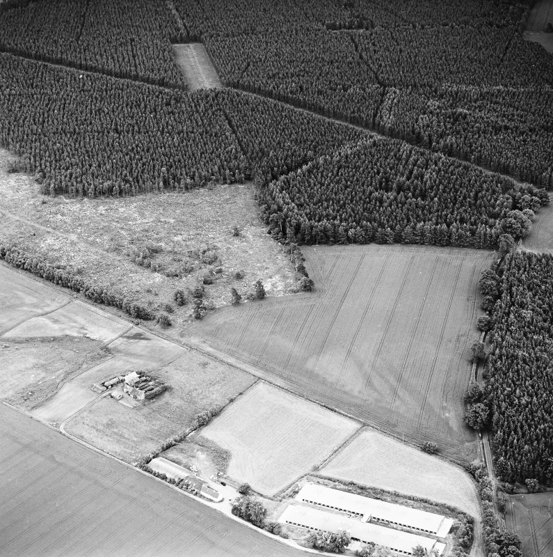 Oblique aerial view centred on the remains of the cursus, linear cropmarks and possible hollow-ways, taken from the NW.