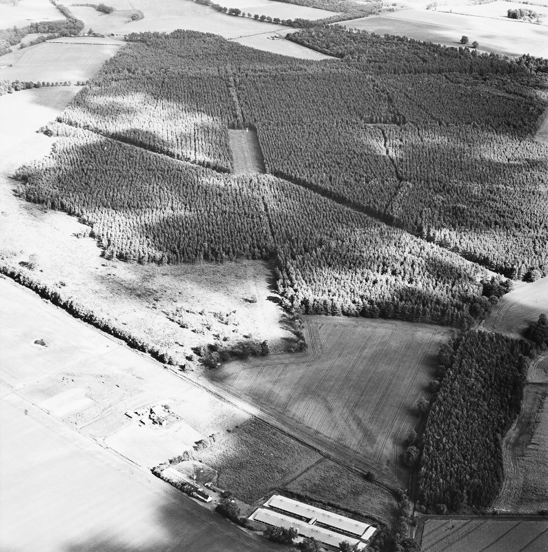 Oblique aerial view centred on the remains of the cursus with  linear cropmarks and possible hollow-ways adjacent, taken from the NW.