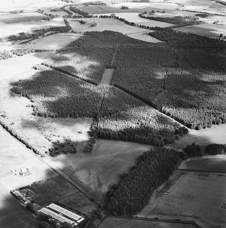 Oblique aerial view centred on the remains of the cursus with  linear cropmarks and possible hollow-ways adjacent, taken from the WNW.