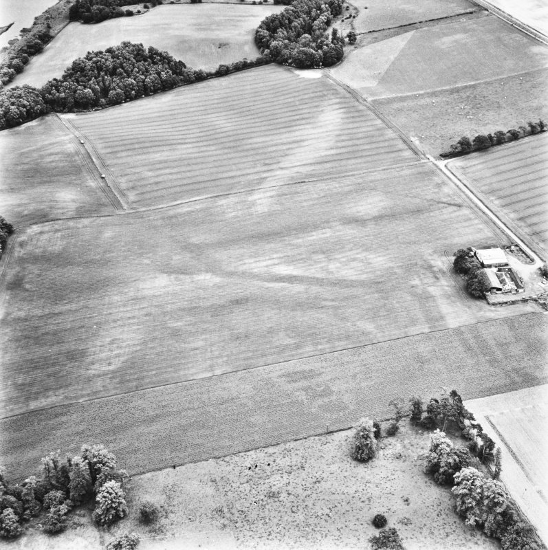 Carpow and Gillies Burn, oblique aerial view, taken from the WNW, centred on the cropmarks of a Roman Fort, a Roman enclosure, ring-ditch and an unenclosed settlement. Mains of Carpow farmsteading is visible in the centre right half of the photograph.