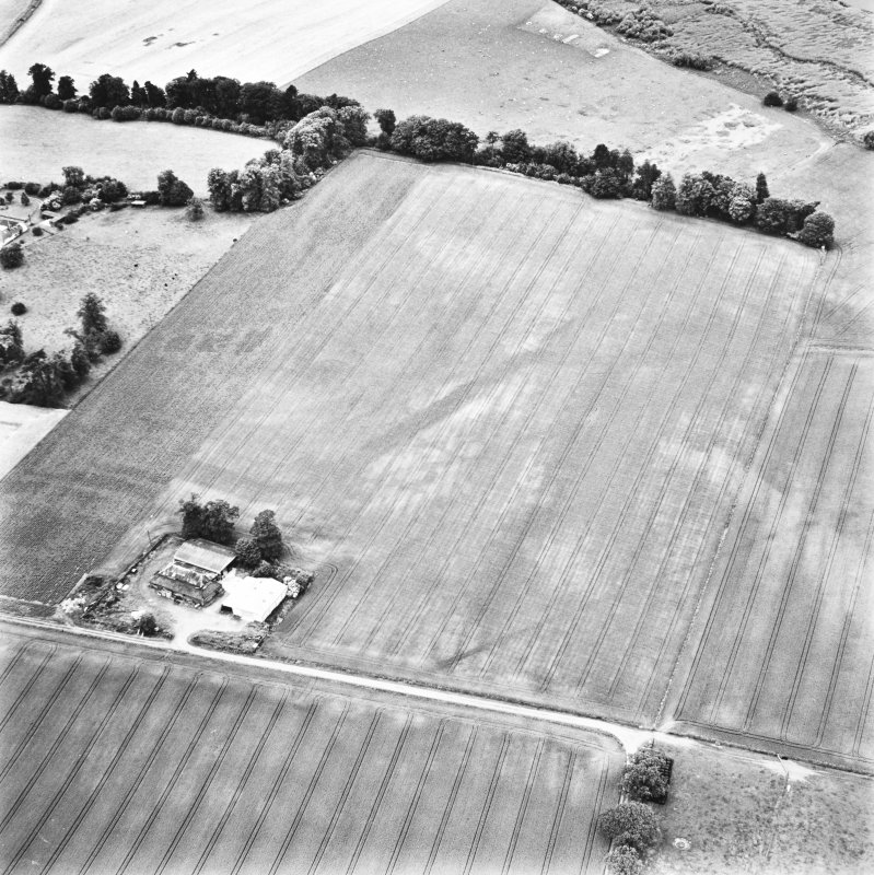 Carpow and Gillies Burn, oblique aerial view, taken from the SE, centred on the cropmarks of a Roman Fort, a Roman enclosure, ring-ditch and an unenclosed settlement. Mains of Carpow farmsteading is visible in the bottom left-hand corner of the photograph.