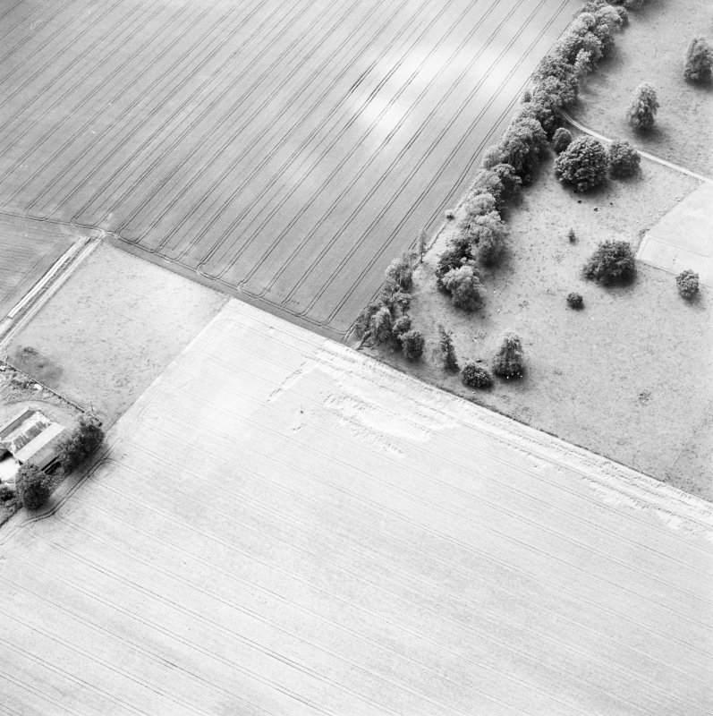 Oblique aerial view of Carpow centred on the cropmarks of a Roman fort and temporary camps, taken from the NE.