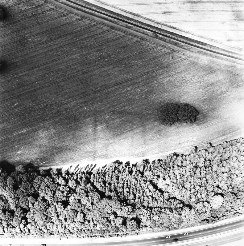 Rossie Priory, oblique aerial view, taken from the NW, centred on the cropmarks of several adjoining enclosures.