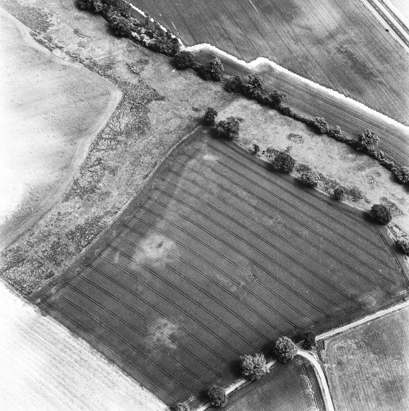 Glencarse, oblique aerial view, taken from the SW, showing the cropmarks of two souterrains and other cropmarks in the bottom half of the photograph.