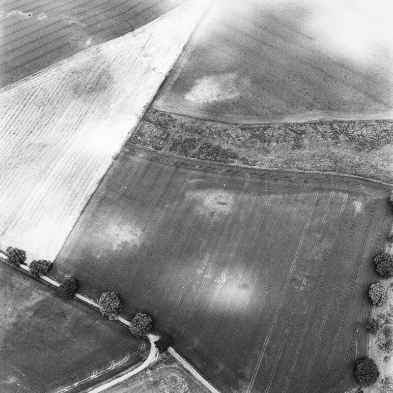 Glencarse, oblique aerial view, taken from the S, centred on the cropmarks of two souterrains and other cropmarks, and also showing another souterrain in the top centre of the photograph.