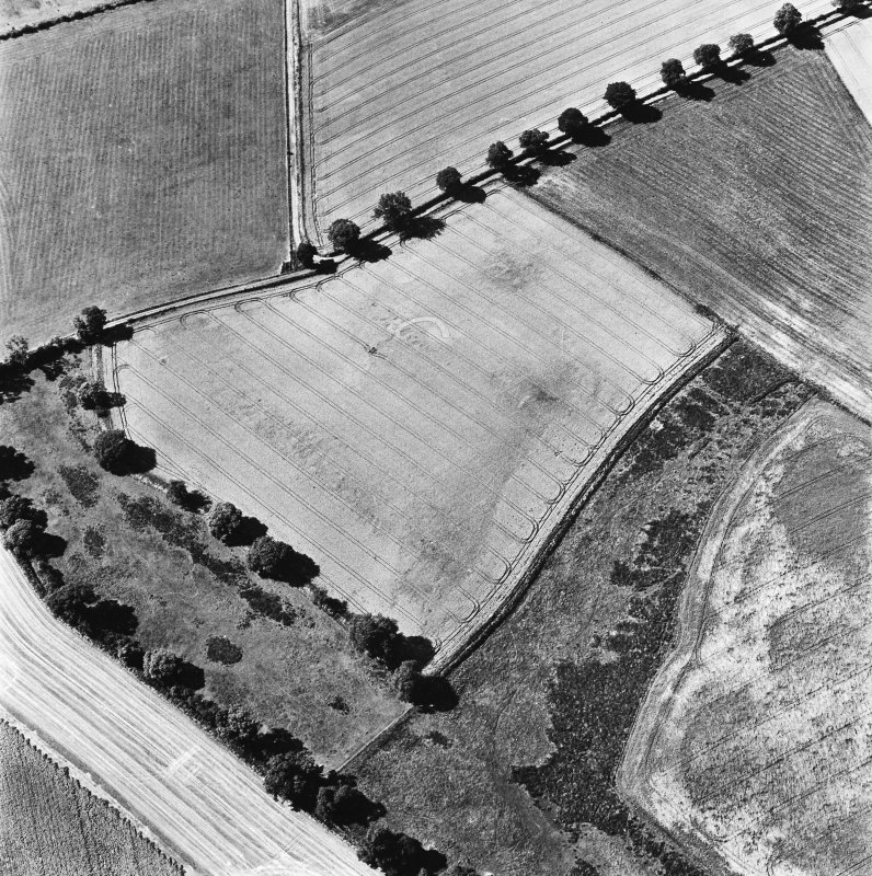 Glencarse, oblique aerial view, taken from the NE, centred on the cropmarks of at least four souterrains.