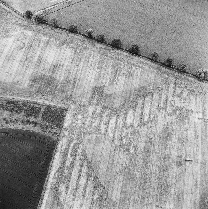 Oblique aerial photograph of Glencarse centred on several cropmarks, including unenclosed settlement, three souterrains, a possible souterrain and a pit,  taken from the NNE.