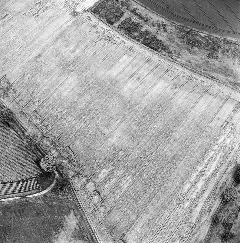 Oblique aerial photograph of Glencarse centred on cropmarks, including unenclosed settlement, three souterrains and a pit, taken from the NW.