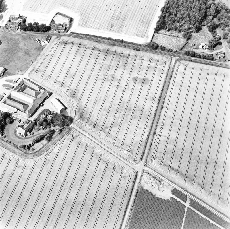 Mains of Errol, oblique aerial view, taken from the SE, centred on the cropmarks of a round-house and possible round-house.