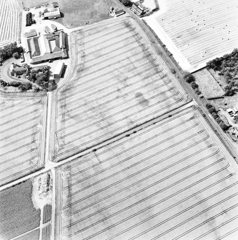Mains of Errol, oblique aerial view, taken from the E, centred on the cropmarks of a round-house and possible round-house.