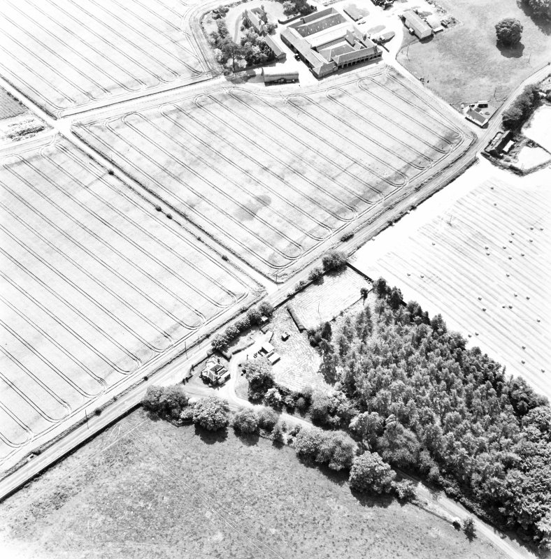 Mains of Errol, oblique aerial view, taken from the NNE, centred on the cropmarks of a round-house and possible round-house.