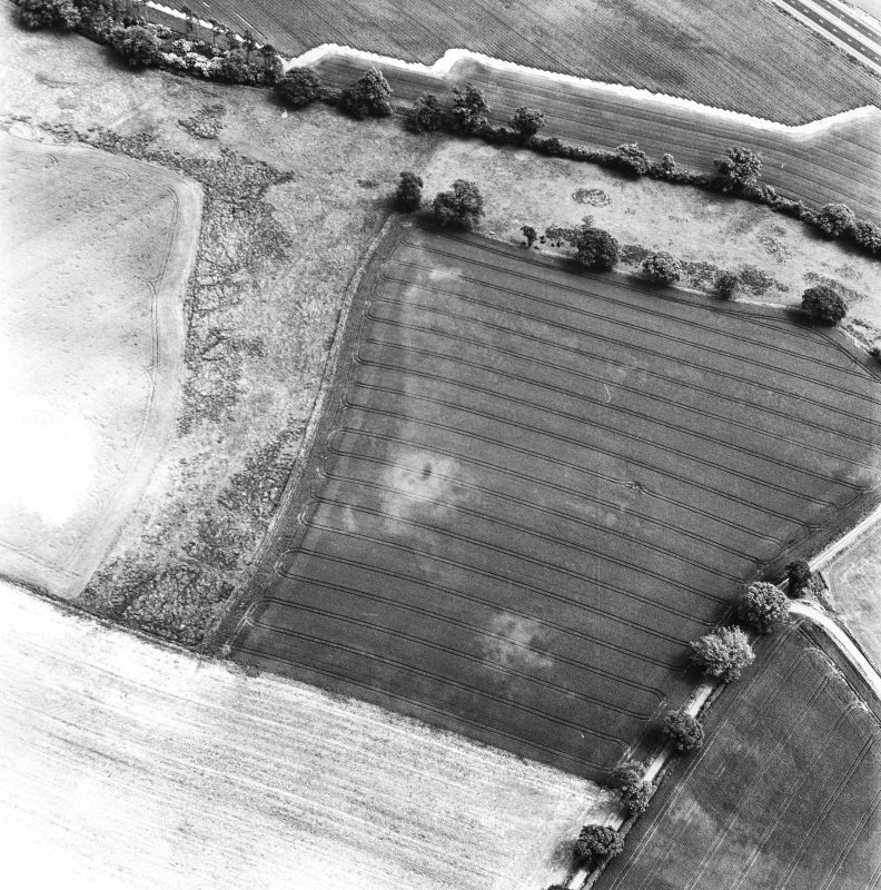 Glencarse, oblique aerial view, taken from the W, centred on the cropmarks of two souterrains and other cropmarks.