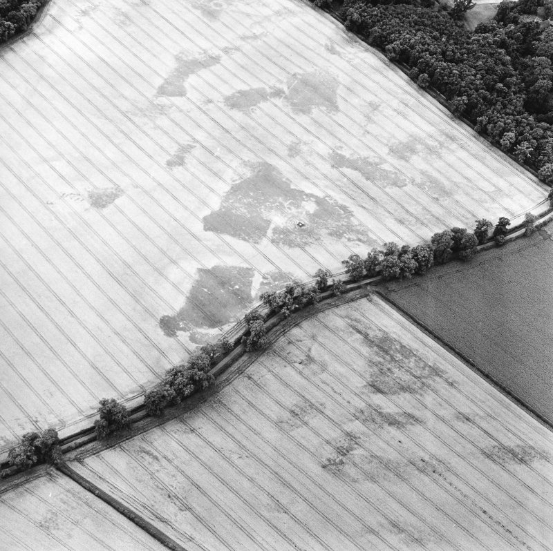 Oblique aerial view centred on the remains of the cup-marked stone and the cropmarks of the ring-ditches, round barrows, square barrows and enclosure, taken from the NNE.