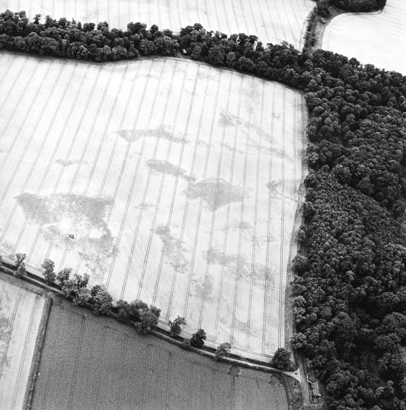Oblique aerial view centred on the remains of the cup-marked stone and the cropmarks of the ring-ditches, round barrows, square barrows and enclosure, taken from the NNW.