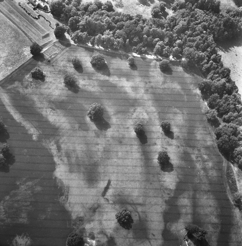 Oblique aerial view of Rossie priory centred on linear cropmarks and the cropmarks of pits.