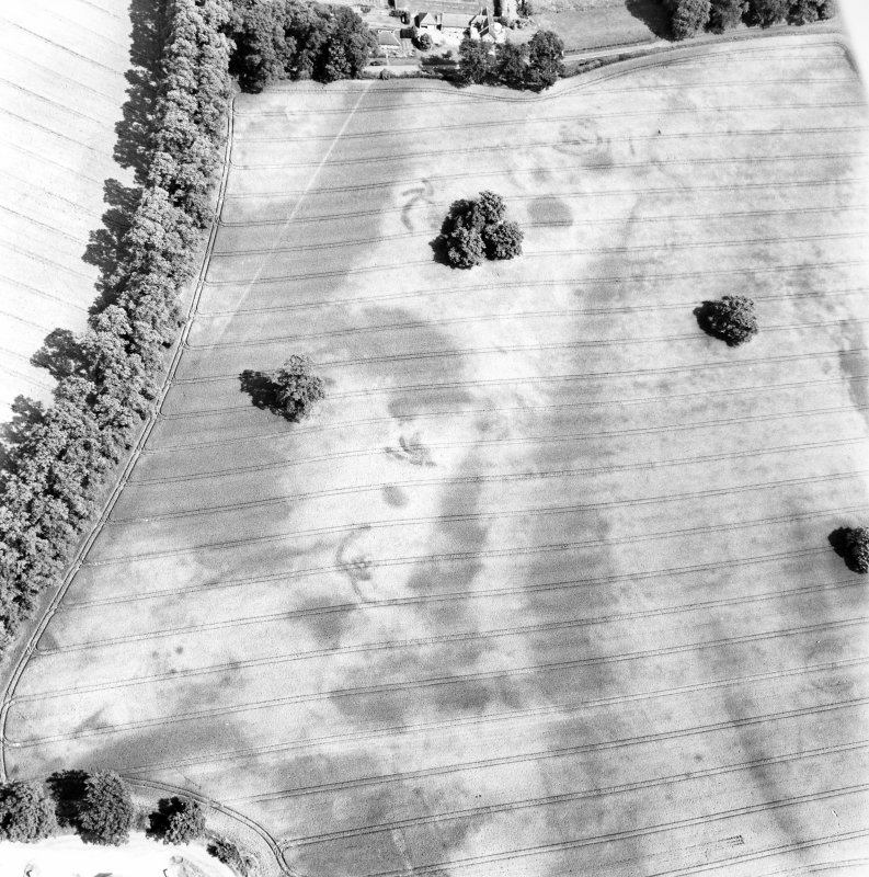 Rossie Priory, oblique aerial view, taken from the SW, centred on the cropmarks of an unenclosed settlement. Cropmarks of barrows are visible in the bottom right-hand corner of the photograph.