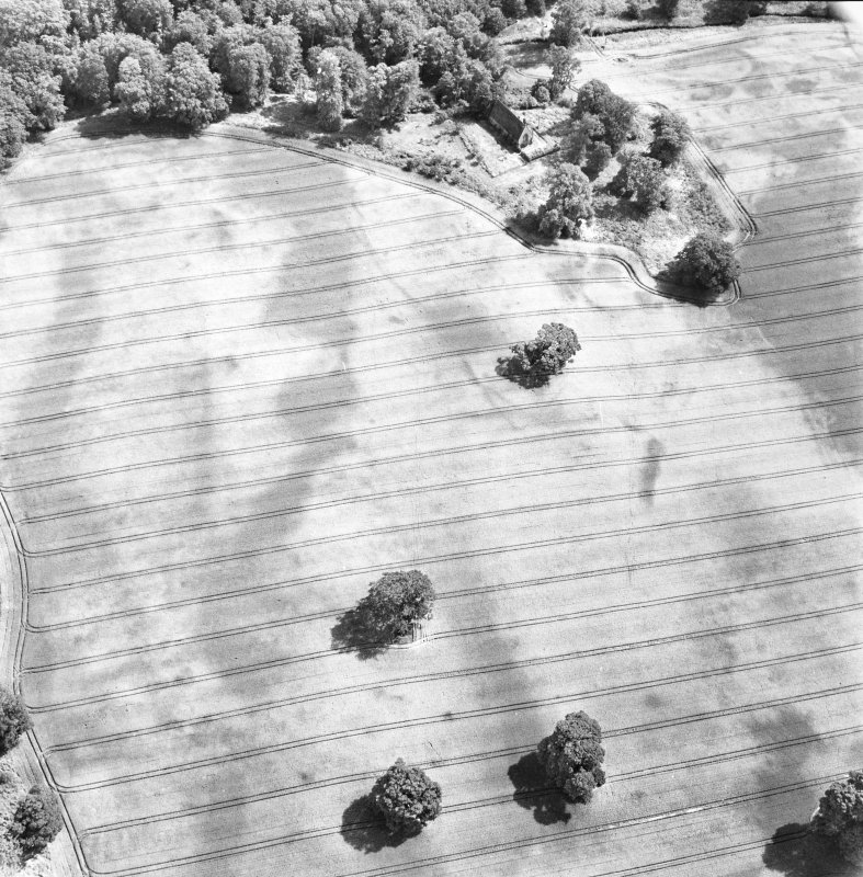 Rossie, oblique aerial view, taken from the NW, centred on the cropmarks of a series of rectilinear enclosures, a trackway and a building. Rossie Church is visible in the top centre of the photograph.