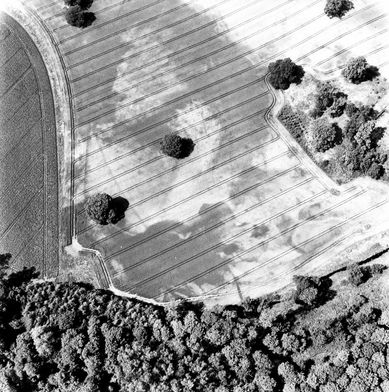 Rossie, oblique aerial view, taken from the SE, centred on a series of indeterminate cropmarks and the marks of an enclosure and a trackway. Rossie Church is visible in the centre right of the photograph.