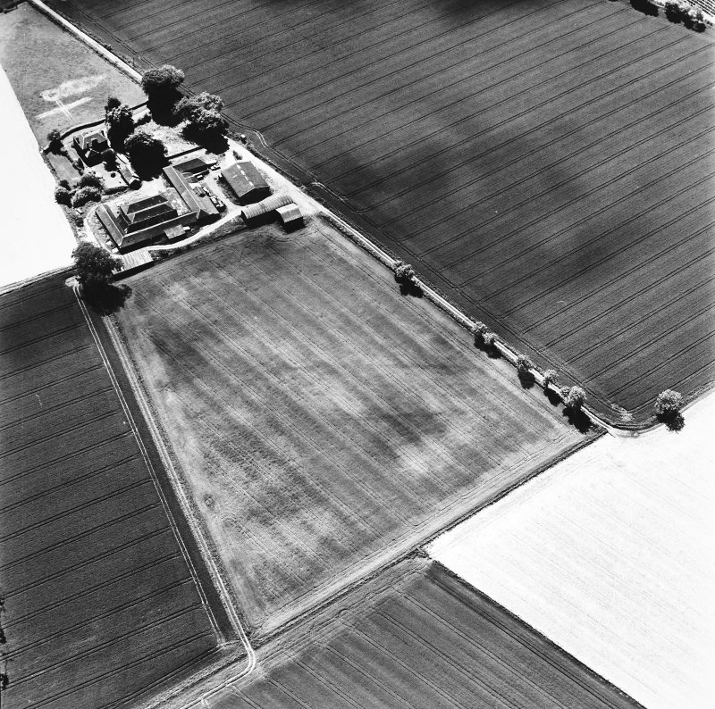 Loch of Liff, oblique aerial view, taken from the NE, showing the cropmarks of a possible cursus.