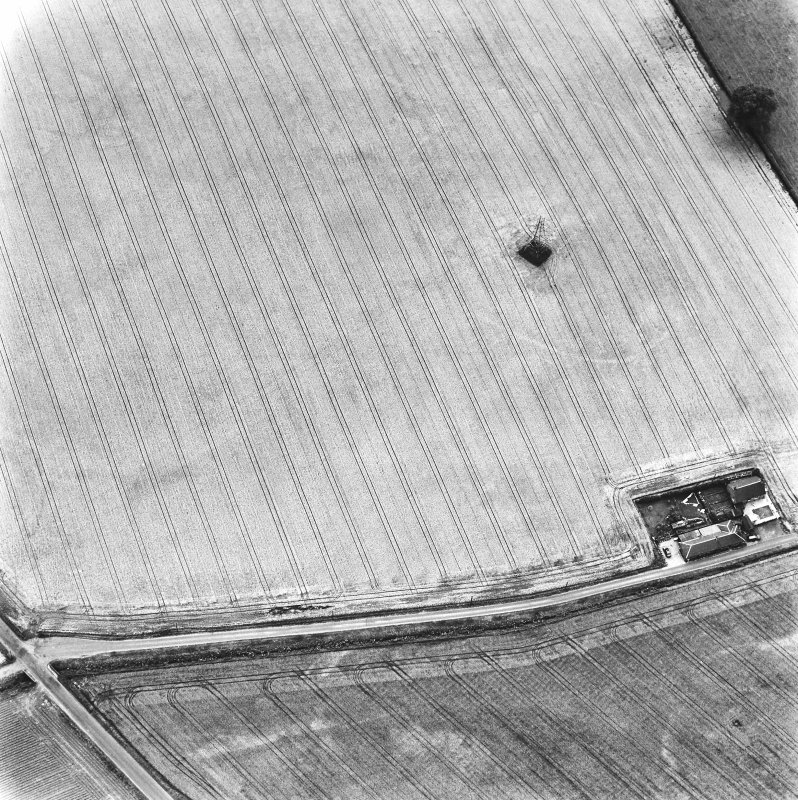 Huntly Burn, oblique aerial view, taken from the NNE, centred on the cropmarks of an enclosure and a ring-ditch.