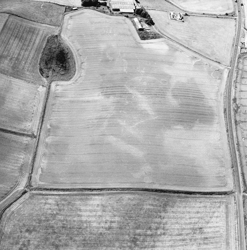 Oblique aerial view centred on the cropmarks of the ring-ditches, unenclosed settlement and barrow, taken from the NE.