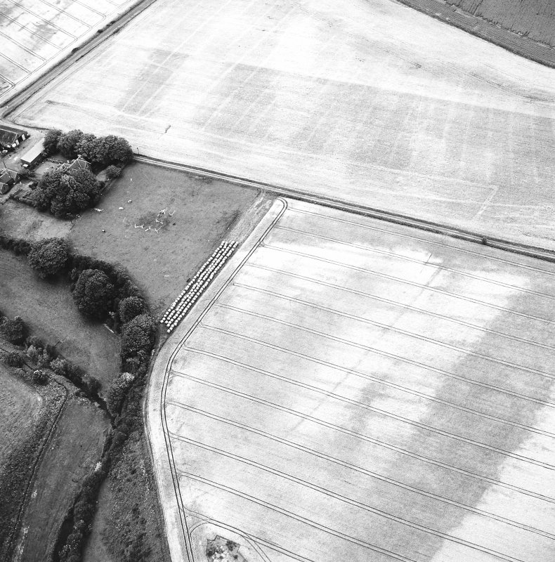 Craigmill, oblique aerial view, taken from the S, centred on cropmarks of an enclosure, barrows and rig.  A second enclosure is visible to the top right of the photograph.