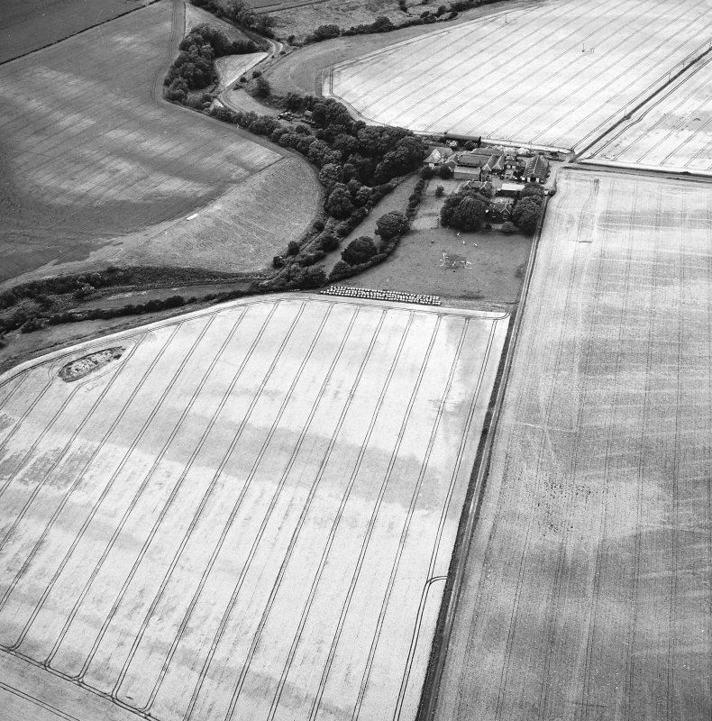 Craigmill, oblique aerial view, taken frow SW, centred on crop marks of an enclosure and rig.  A second enclosure is visible in the top right corner.