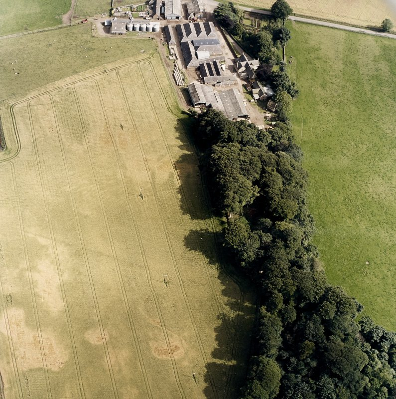 Oblique aerial view centred on the cropmarks of the fort and rig, with the farmsteading and dovecot adjacent, taken from the NW.
