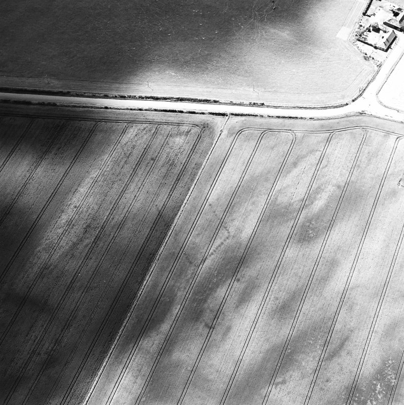 Balneaves Cottages, oblique aerial view, taken from the NE, centred on the cropmarks of a pit-defined cursus and ring-ditches.