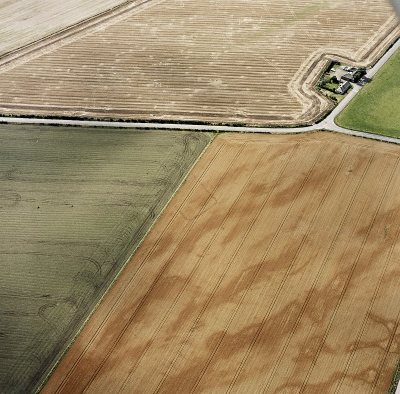 Oblique aerial views centred on the cropmarks of the NE terminal of a pit-defined cursus with ring-ditches, pits and cropmarks adjacent, taken from the NE.