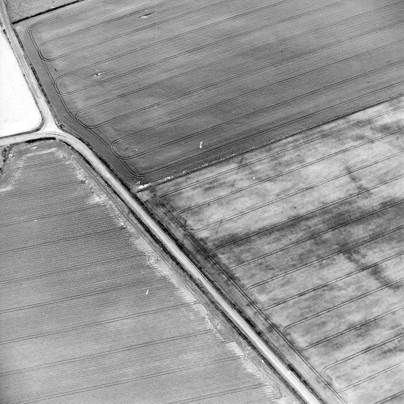 Oblique aerial view centred on the cropmarks of the pit-defined cursus, taken from the SSW.