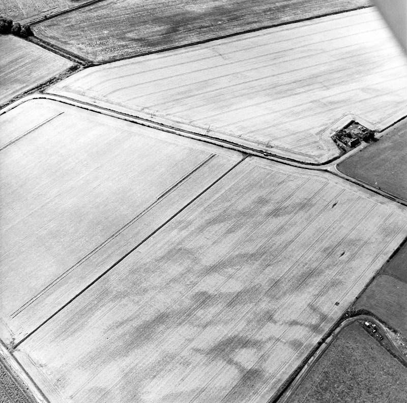 Oblique aerial view centred on the cropmarks of the pit-defined cursus, taken from the NE.